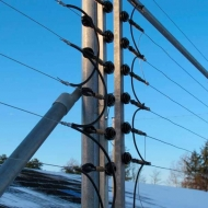 Elektrisk sikringshegn